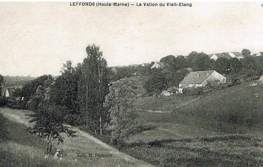 Le vallon du vieil étang