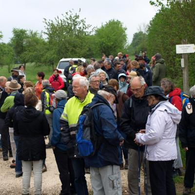 Via-Francigena-Leffonds-2016 (46)