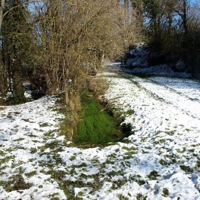 Le ruisseau près de la fontaine