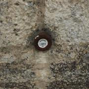 Visite de l'église Saint-Denis (6)
